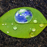 Earth in water drop reflection on green leaf, Save the earth concept, Elements of this image furnished by NASA